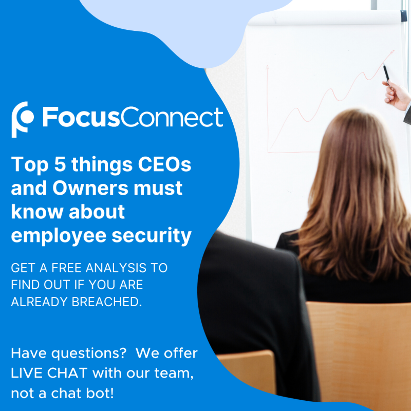 Top 5 Things CEOs Need To Know about Employee Security